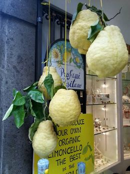 Lemons the size of your head! , Beth W - April 2016