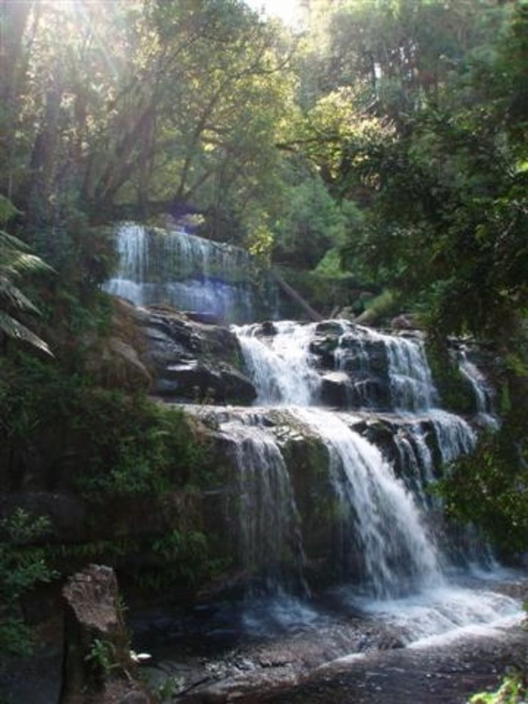 Liffey Falls -