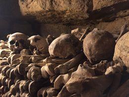 Skulls an bones! , Colton S - May 2015