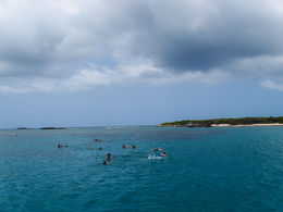 Snorkeling. , Thorne and Gretchen W - July 2014