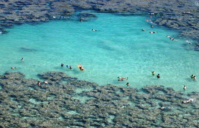 snorkeling - Oahu