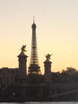 Cruising the Seine to the Eiffel Tower - absolutely stunning , annabron - October 2015