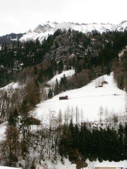 More Snow! - December 2009