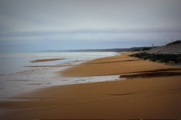 Standing on Omaha Beach , Rachel T - January 2014