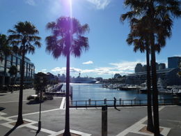 Darling Harbour , Susan C - May 2011