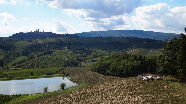 PA041273 - Florence