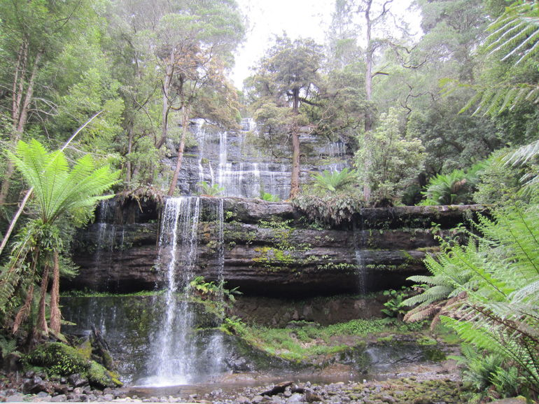 Mt Field National Park and Russell Falls from Hobart photo 10