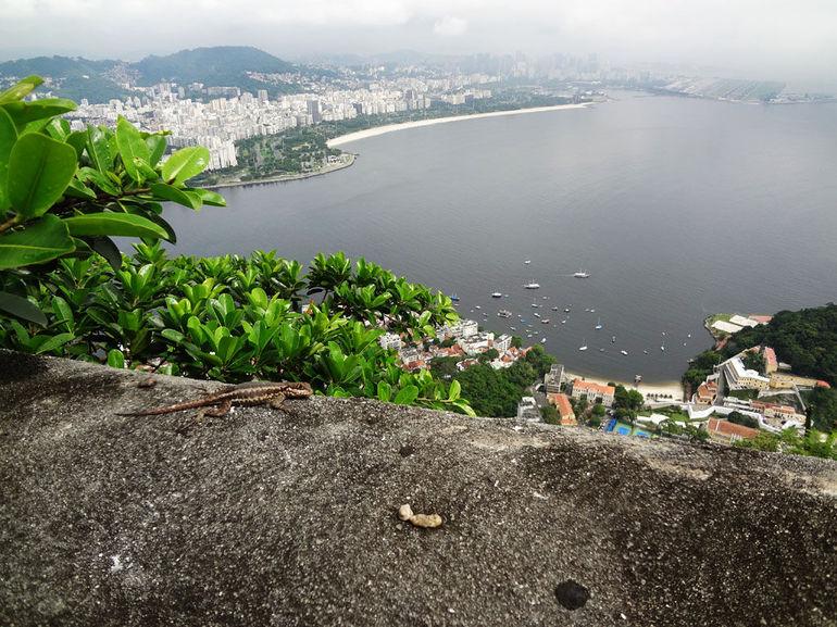Sugar Loaf view. - Rio de Janeiro