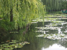 Monets Garden Giverny , Paul R - August 2014