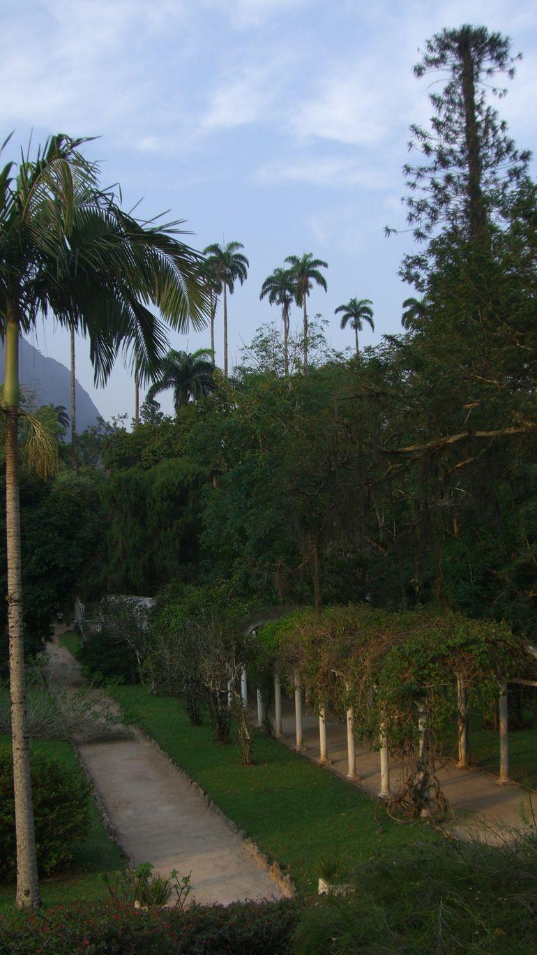 View from above - Rio de Janeiro