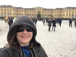 Schonbrunn Palace , amerovich - January 2017