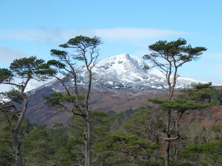Glen Affric - Edinburgh