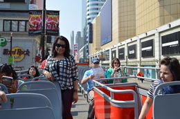 Sightseeing tour bus , RITCHEL R - June 2014