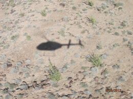 Shadow of our Helicopter on the way to the floor of the canyon. , rbund01 - October 2012