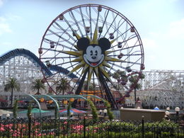 And California Screamin' coaster in front., LUCY K - June 2011