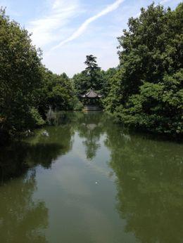 West Lake in Hangzhou, Cat - July 2012