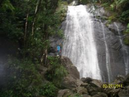The Rain forest waterfall , Victoria B - February 2011