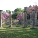 4 días por la Grecia clásica: Epidauro, Micenas, Olimpia, Delfos, Meteora, Atenas, GRECIA