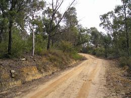 This is part of the 4WD road we took to get deep into the Blue Mountains., Christine C - July 2008