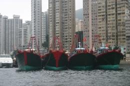 The boats - Hong Kong Trip, Trevor William B - June 2010