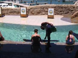 Petting the Sea Lion - June 2008