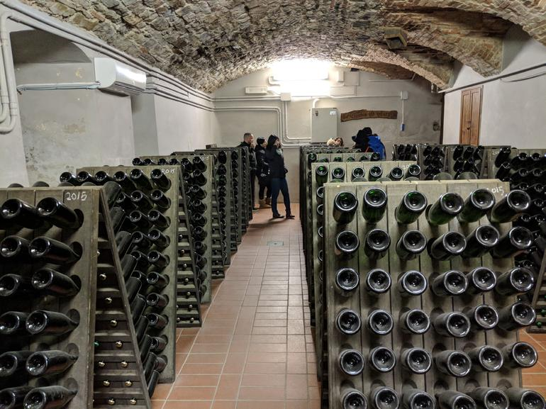 Tuscan Castle and Cellars Small Group Tour with Pasta Making Class +Wine Tasting