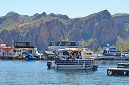 cruising Saguaro Lake , John L - March 2015