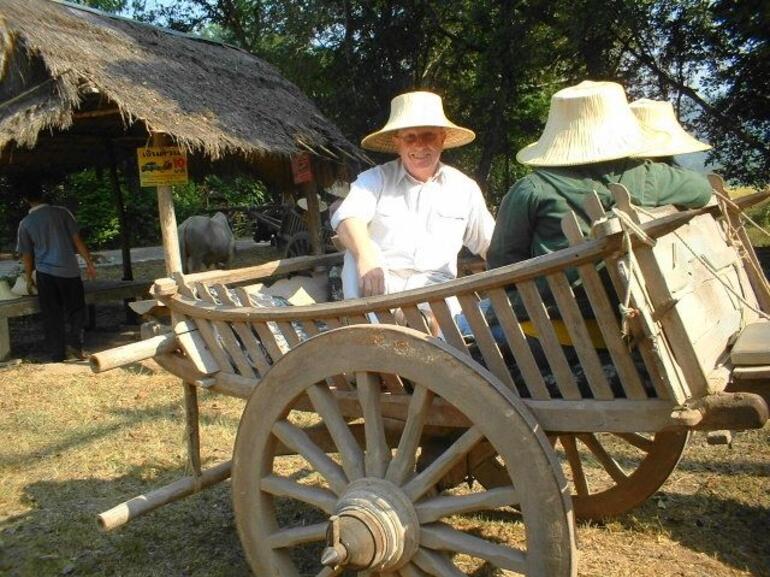 Ox and Cart Ride - Bangkok