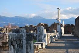 Pompeii , Sandra F - February 2011