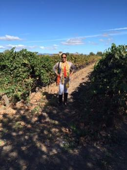 Cline Cellars, a beautiful day in Napa! , JayNBee - October 2014