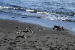 The black sand , Celine - January 2014