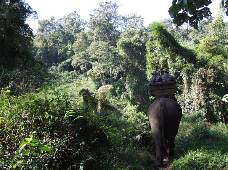 DSCF6052 - Thailand
