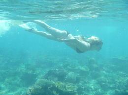 nager en snorkling ou juste avec des lunettes , AMANDA G - September 2013