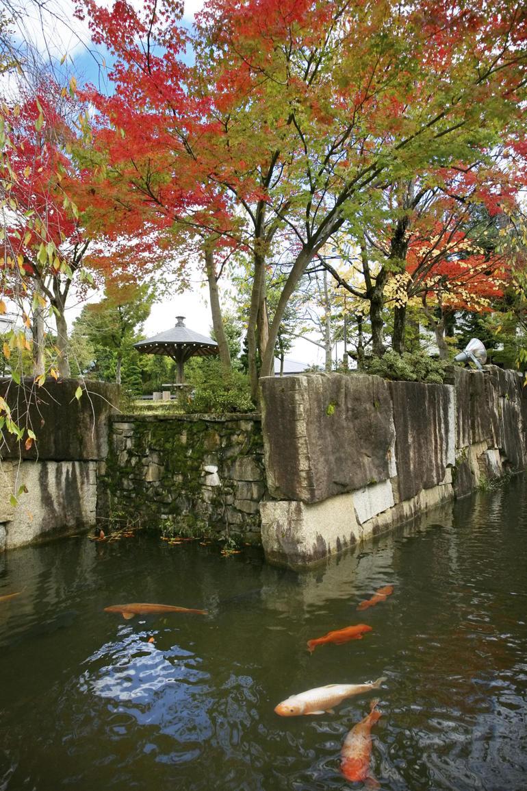 Japanese garden - Tokyo