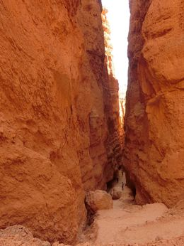 The walk down Bryce Canyon is just too good to miss. Best part of the tour. Beware though, walking down is easy, up is tougher than expected. , YewHua T - July 2016