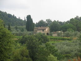 Chianti region , Lori N - August 2013