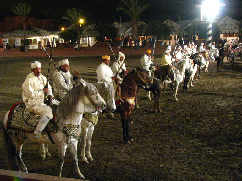 Horses - Marrakech