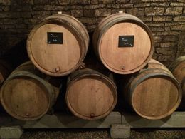 Some wine barrels in the cellars , Joe K - August 2015