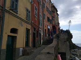The walkway in Riomaggiore, leading up to the look out. Note the century plant growing out of the cliffside on the right. , Ken - October 2015