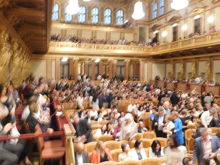 Vienna Mozart Evening: Gourmet Dinner and Concert at the Musikverein photo 23