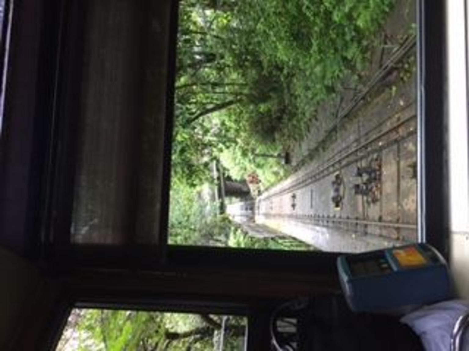 MÁS FOTOS, Hong Kong Island Half-Day Tour including Peak Tram