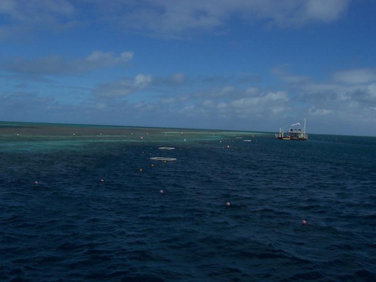 barriere-de-corail-croisiere-iles-whitesundays