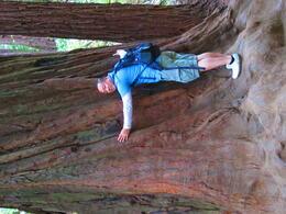 tree-hugger! :) SF 8/2011 , Nicole G - August 2011