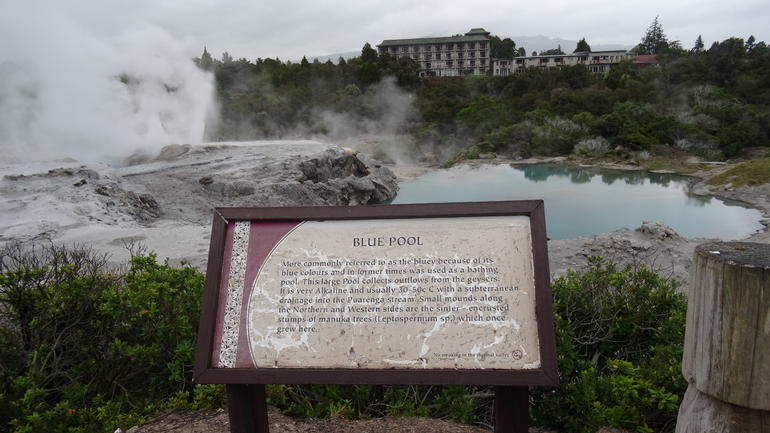 Rotorua Full Day Tour: Waitomo Caves, Agrodome and Te Puia departs Auckland photo 13