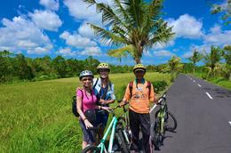 Lovely ride past rice fields! , Susan P - June 2017