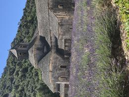 Old monastery with beautiful lavender fields outside of Gordes. , Patricia B - July 2017