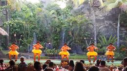 PCC Luau performance , Dana K - November 2017