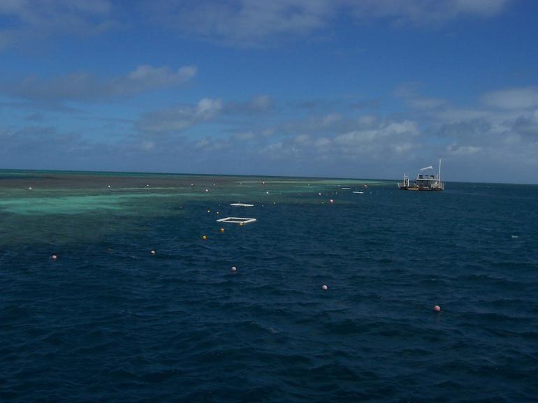 whitesundays-croisiere-barriere-de-corail