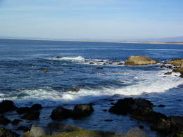 We rented a car and drove from San Francisco to Monterey Bay. Its a beautiful drive especially in a convertible. The waters are some of the prettiest I have ever seen. , Joy J - March 2011