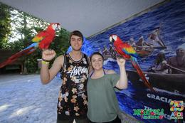 Holding Macaws , Aimee P - December 2016
